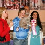 Победитель. Британский кот в окружении эксперта, переводчика и представителя Роял Канин