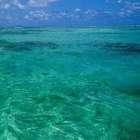 Стихотворение «Когда прозрачной синевой»